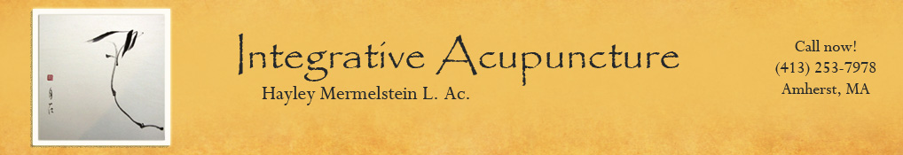 Hayley Mermelstein, Acupuncture, Shiatsu, Energy Healing, Chakra Balancing, Guided Meditations – Amherst, MA